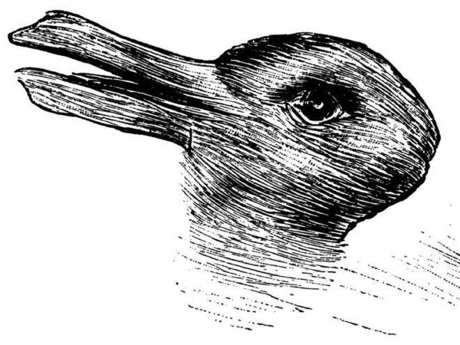 Утка или заяц