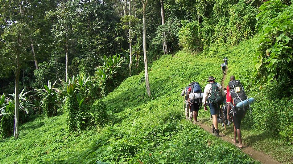 Тропы Кокода