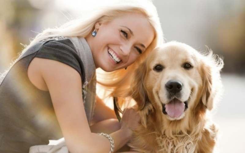 У вас стресс? Эти 6 пород собак, помогут с ним справиться
