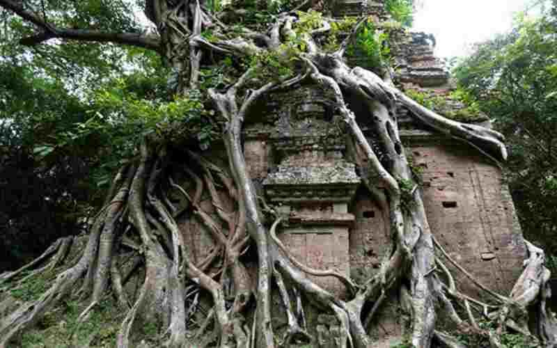 Затерянные в джунглях следы некогда великой цивилизации