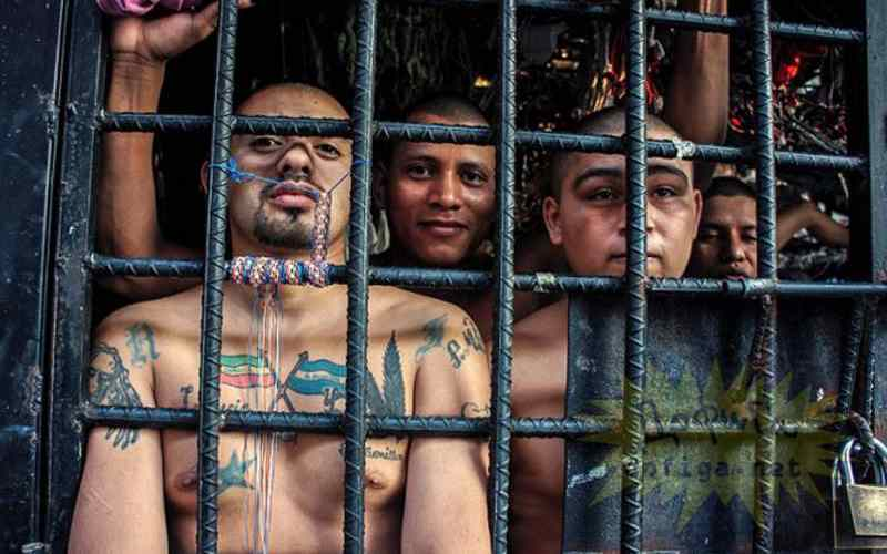 Значение татуировок у заключенных в разных странах мира