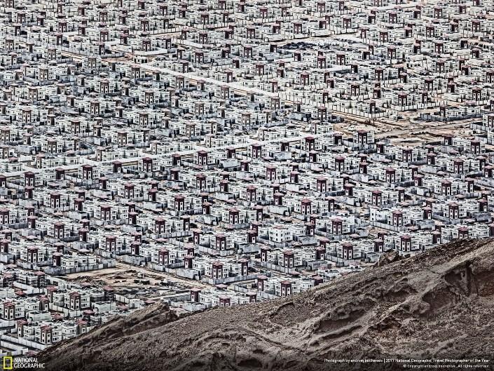 Эль-Бурайми, Оман. Фото: Andrzej Bochenski