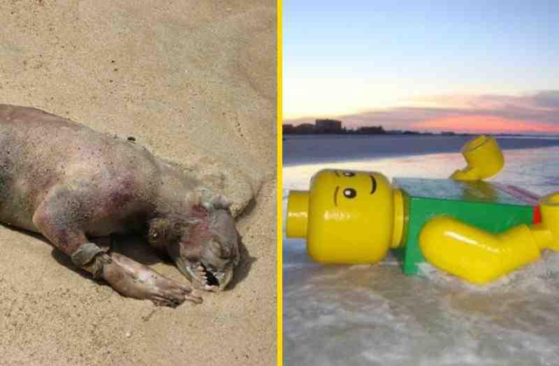 Самые странные вещи, найденные на пляже