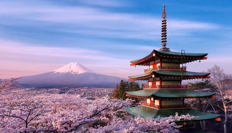 8. Япония