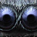 Фото различных предметов и существ под микроскопом