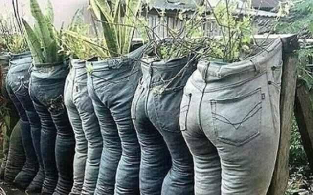 19 Людей, которым следует запретить заниматься садоводством навсегда