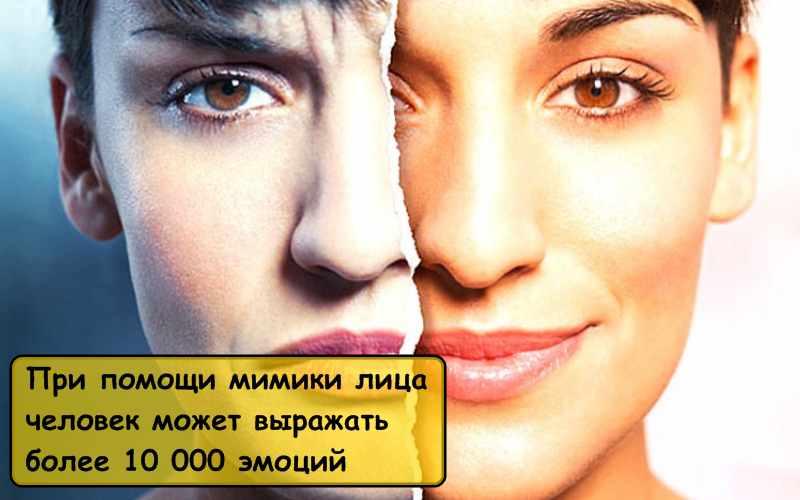 Интересные факты о человеческих эмоциях