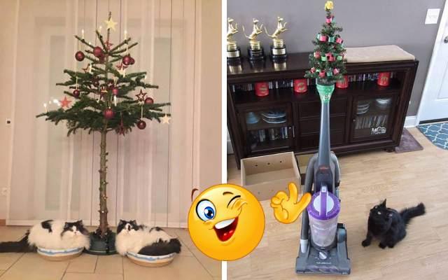 Примеры того, как защитить новогоднюю елку от домашних животных