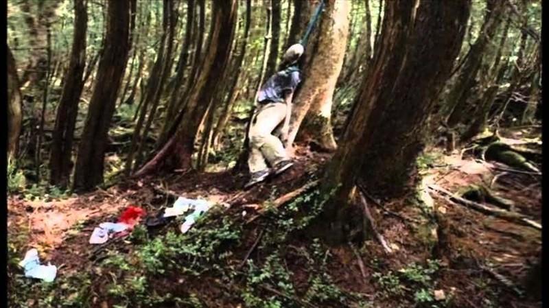 Жуткий японский лес самоубийц