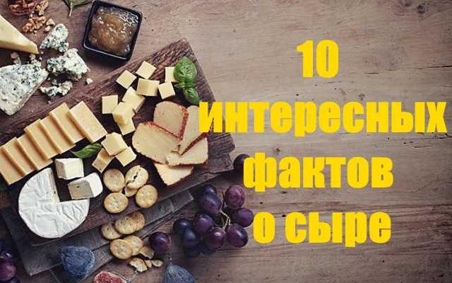 10 интересных фактов о сыре