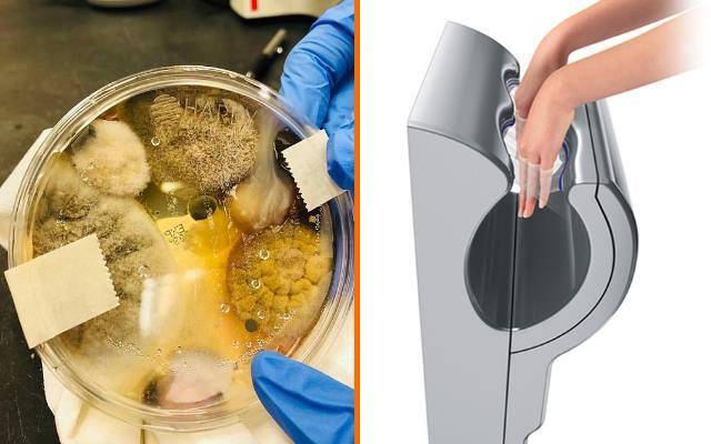 Причина по которой не стоит сушить руки в общественных туалетах