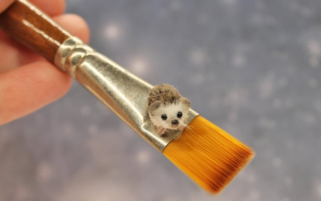 Девушка создает миниатюрные фигурки животных