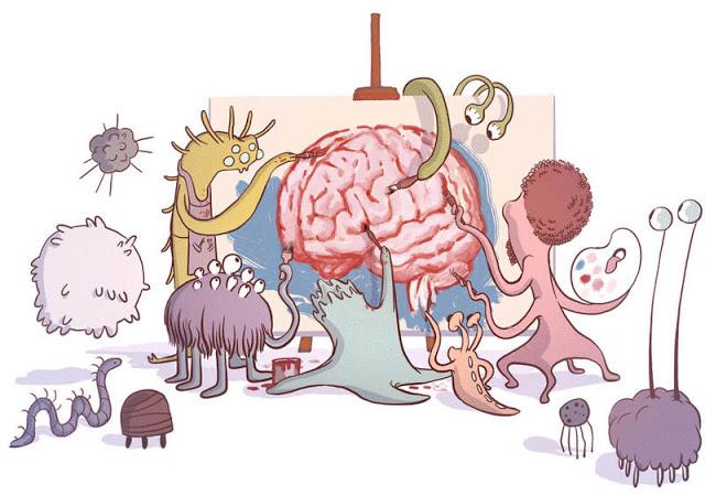 Ось кишечник - мозг