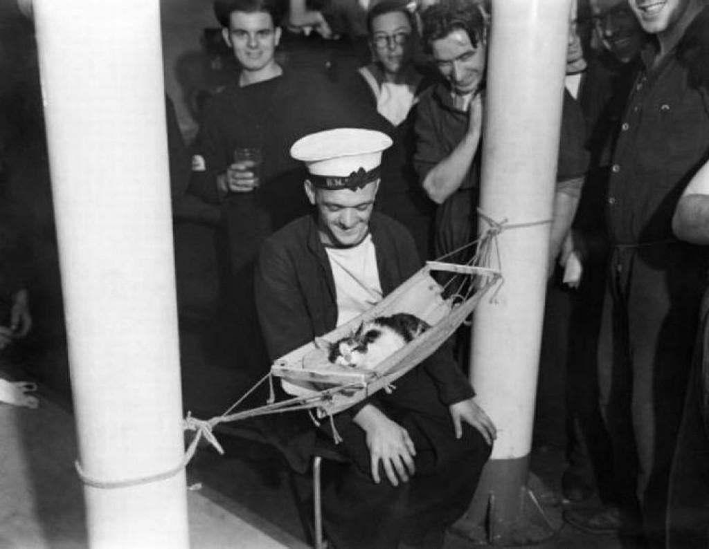 Российские моряки окружают спящего котенка 1941 года