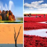25 самых невероятных творений природы