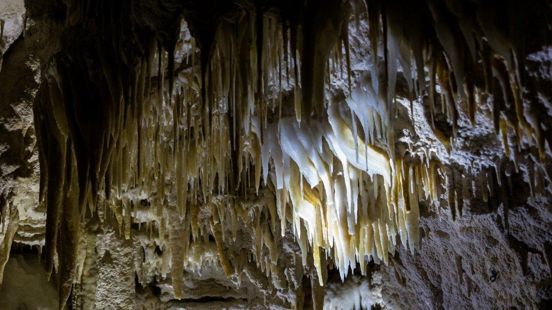 Пещеры Вайтомо, Австралия