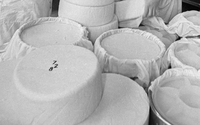 Зачем в советский сыр вставляли пластиковые цифры