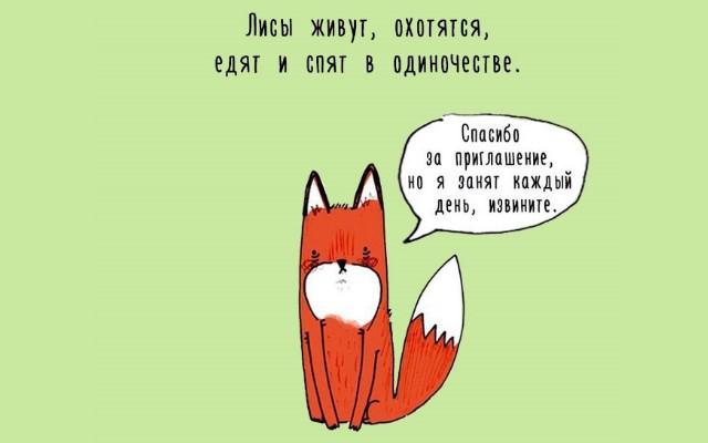 Интересные факты о животных (15 рисунков)
