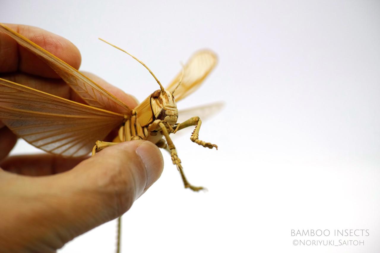 NoriyukiSaitoh насекомые из бамбука