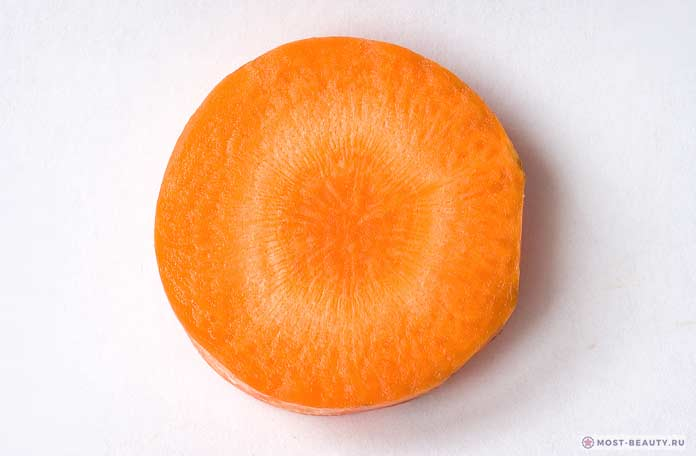 Морковь / Daucus carota subsp. Sativus