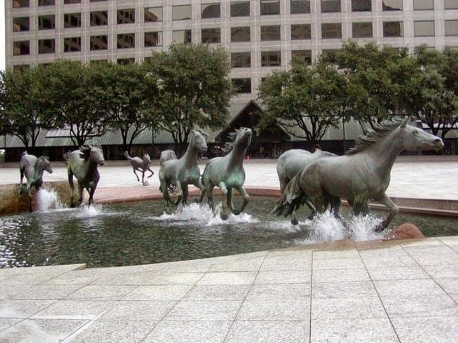 Мустанги Лас-Колинаса, Техас, США