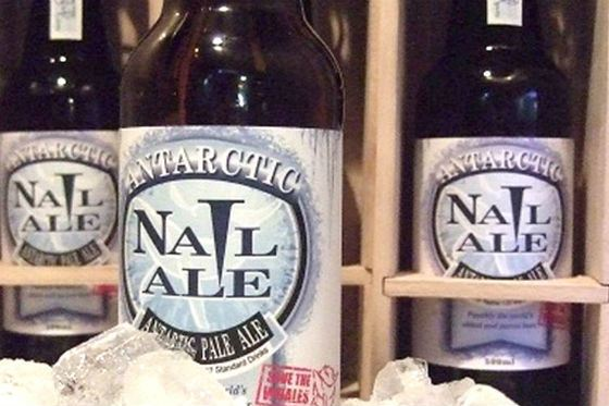 Самое дорогое пиво – Antarctic Nail Ale