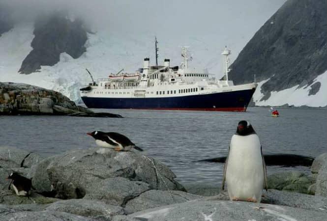 26 интересных фактов об Антарктиде