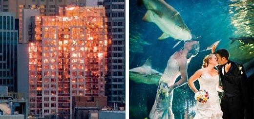18 фотографий, где отражение создает совершенно новую реальность