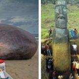 30 интересных фотографий, которые показывают скрытую сторону вещей