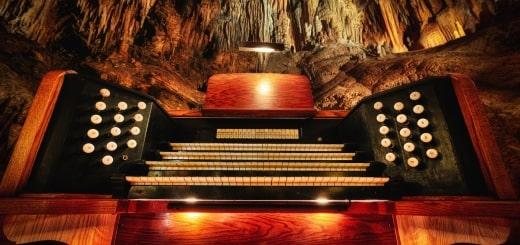 10 самых редких музыкальных инструментов в мире
