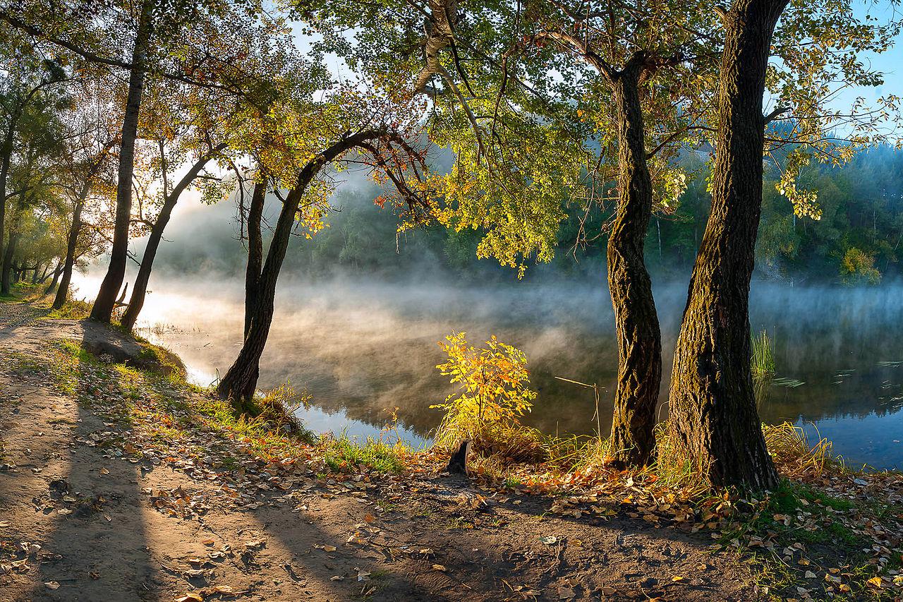 Национальный природный парк «Святые горы», Украина