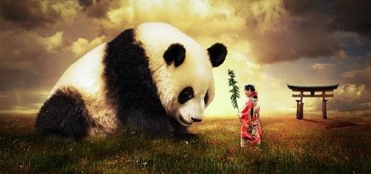 Самые интересные факты о Китае и китайцах