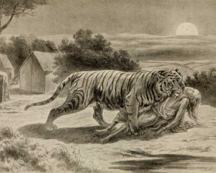 тигры-людоеды