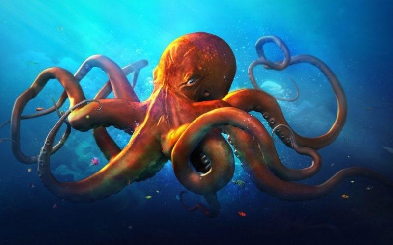 У осьминога три сердца