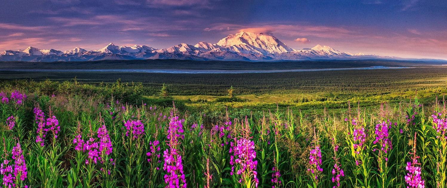 Денали (Mount McKinley)