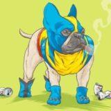 20 невероятных способностей, которыми обладает ваша собака