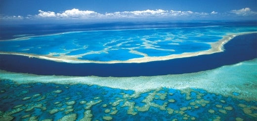Самые интересные факты об океанах