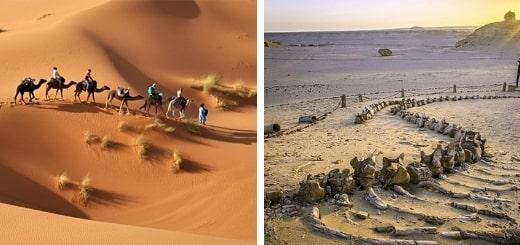 Загадки и тайны пустыни Сахара