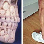20 фото, которые расскажут о человеческой анатомии лучше, чем учебник