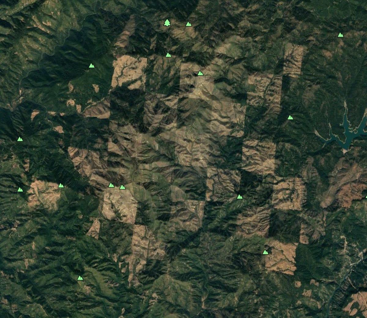 Лесозаготовка на севере Калифорнии