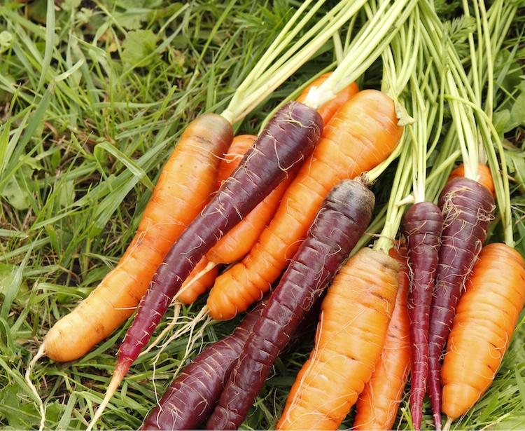 6. Морковь