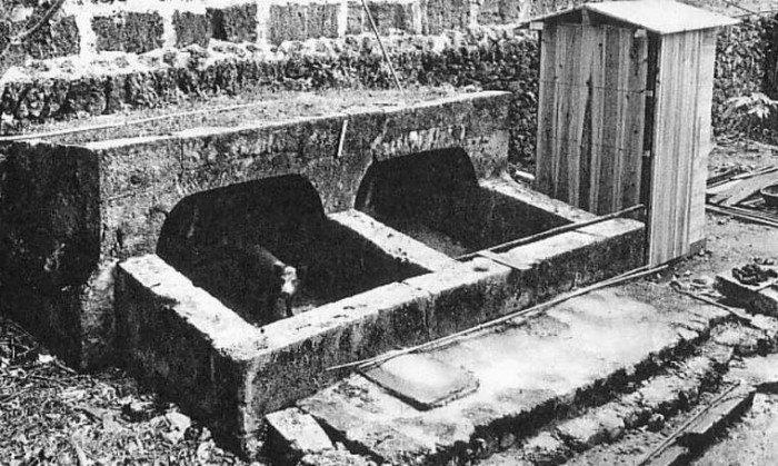 Они придумали и широко использовали свиные туалеты