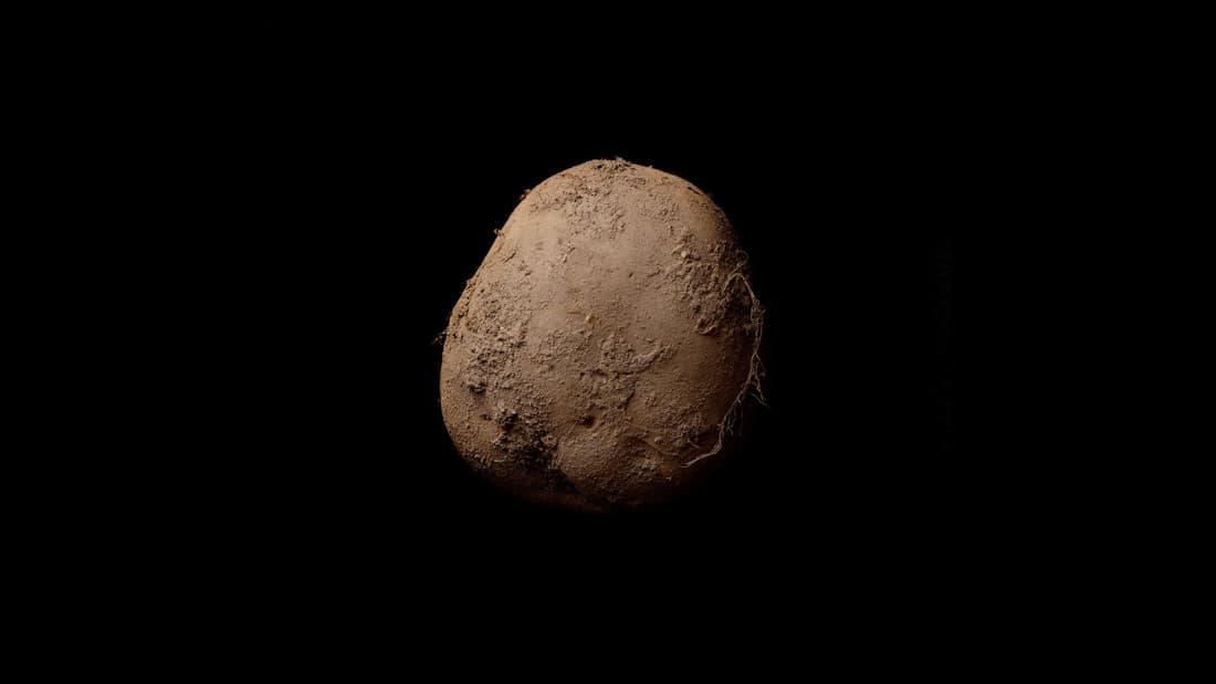 Кевин Абош — «Картошка #345»