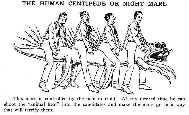 Человеческая многоножка
