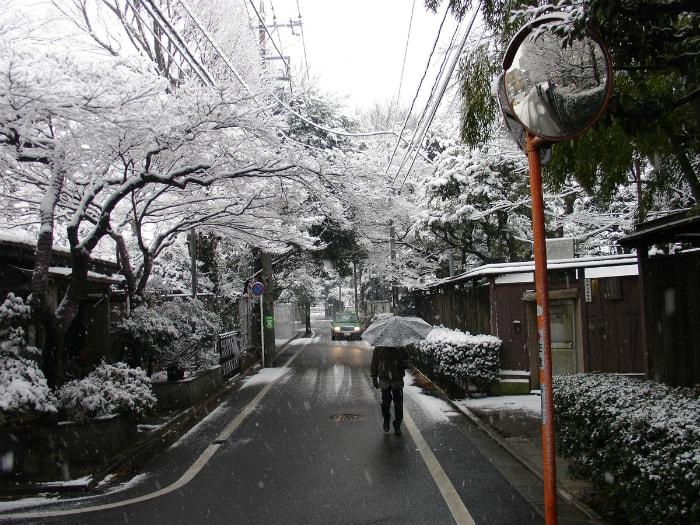 Интересные факты о жизни в Японии