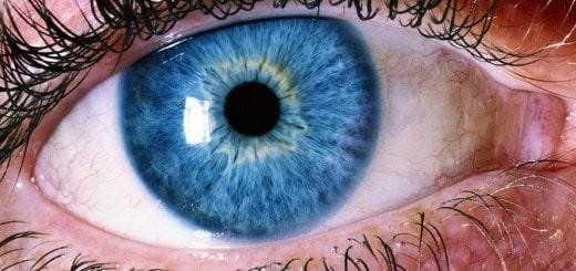 Как видят люди с разными нарушениями зрения?