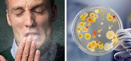 12 малоизвестных фактов, о местах обитания коварных вирусов и бактерий