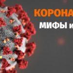 Мифы и факты о коронавирусной инфекции (COVID-19)