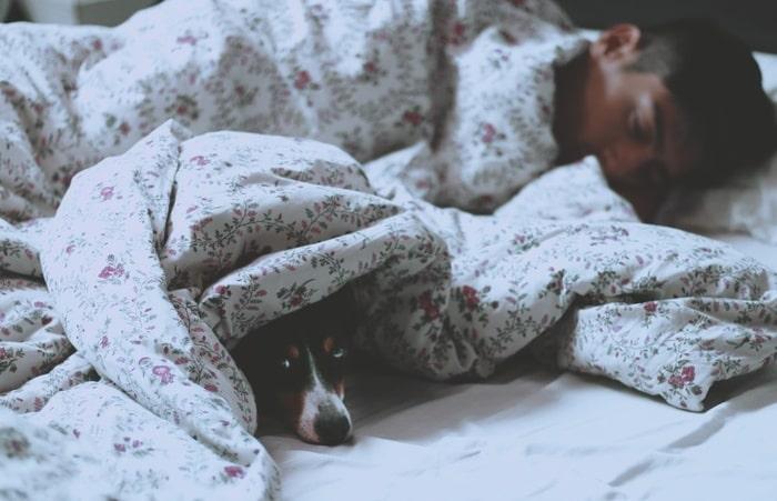 тяга ко сну