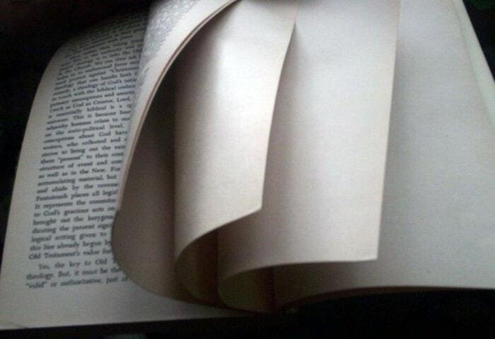 Зачем в книгах пустые страницы